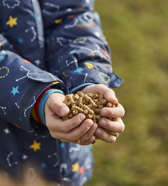A child holding deer feed in their hands as part of education at Sky Park Farm