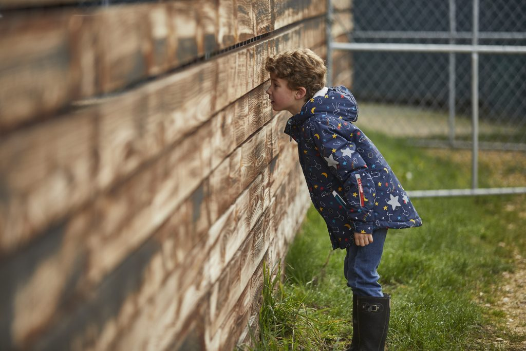 Sneak peek event at the farm, boy looking through fencing at the deer