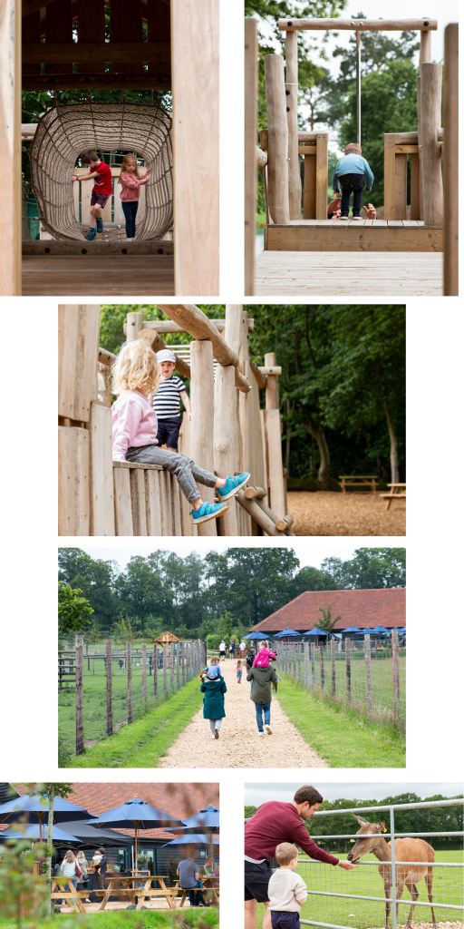 Images of children and families at Sky Park Farm